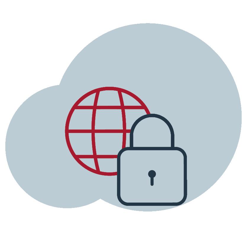 Cyber-Sicherheit und Systeme